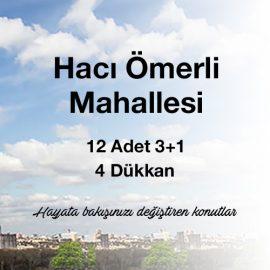 Hacı Ömerli Mahallesi 3+1